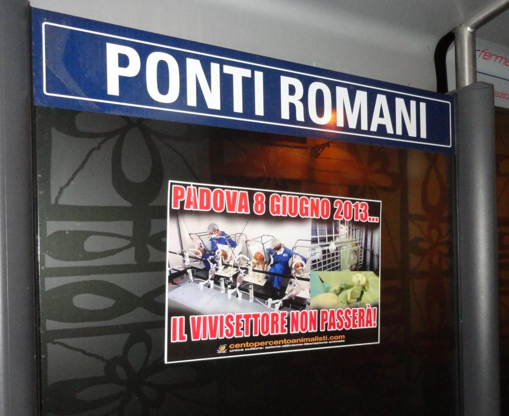 Padova (12)