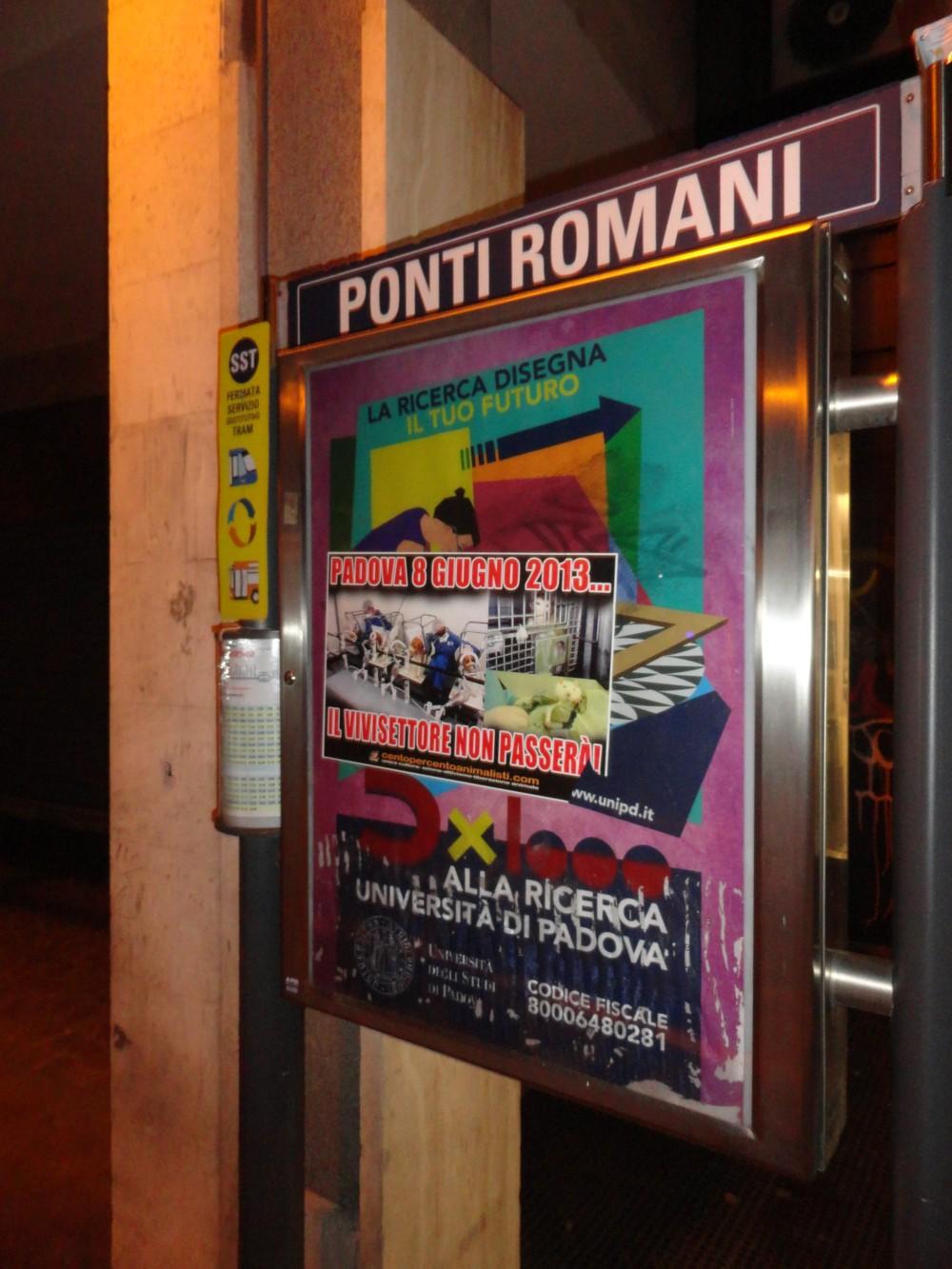 Padova (14)