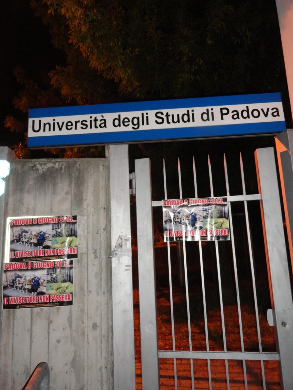 Padova (7)