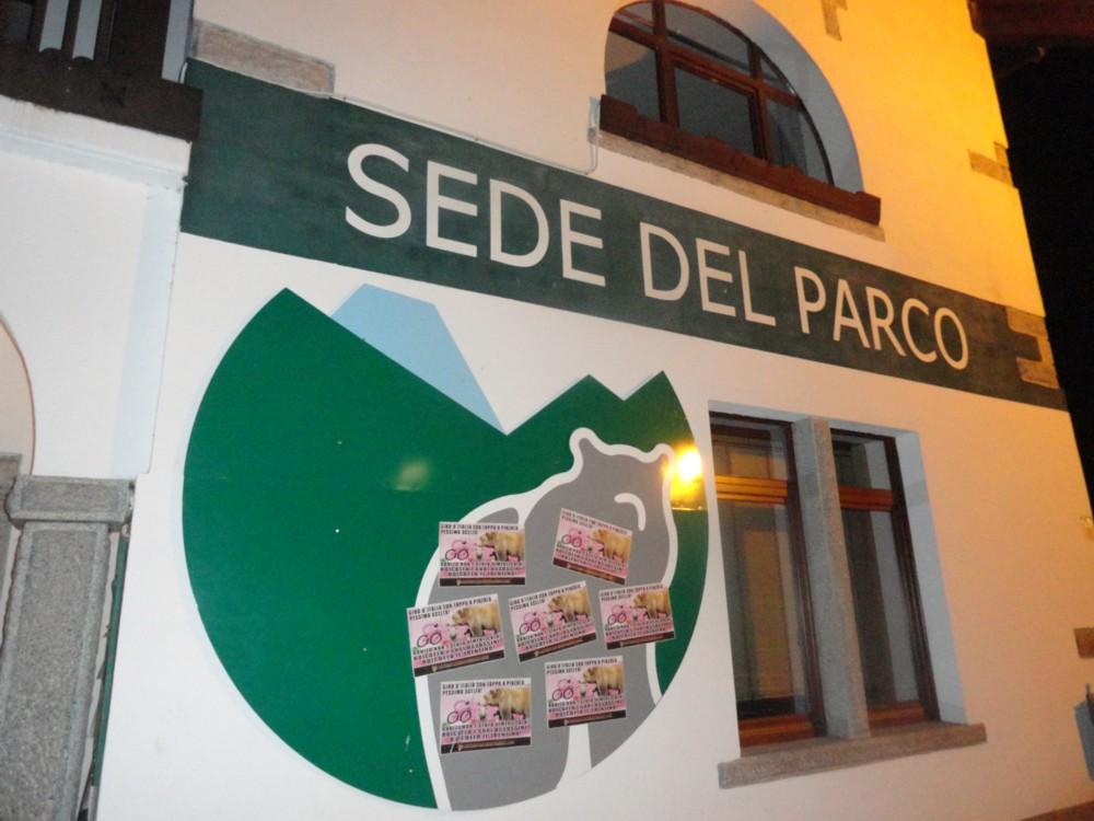 Parco (1)