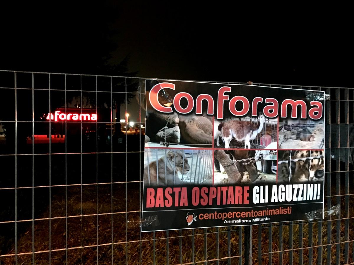 Conforama Mestrino (5)